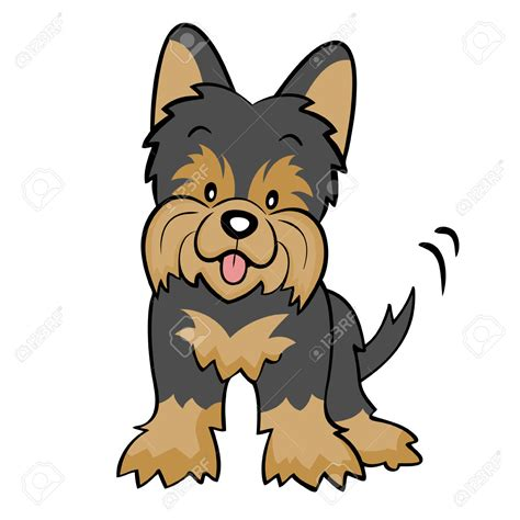 how to clip a yorkie terrier clipart clipground
