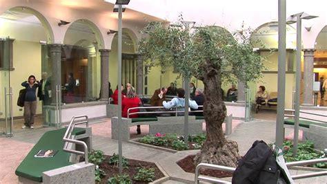 casa di cura villa roma clinica villa stuart istituzionale