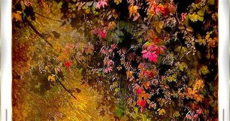 le foglie morte testo le foglie morte jacques pr 233 vert
