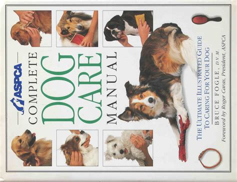 puppy book we should raise children like we raise dogs dangerous intersection