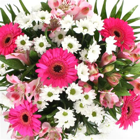 Get Well Flowers by 15 Get Well Soon Wishes For A Friend