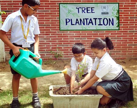 Clean Up Drive Essay by Report Writing On Tree Plantation Programme In School Researchmethods Web Fc2