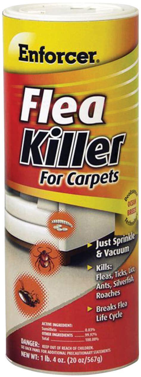 flea stuff for carpets carpet review