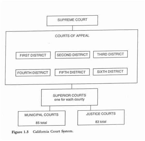Federal Court Search California United States Court System Chart
