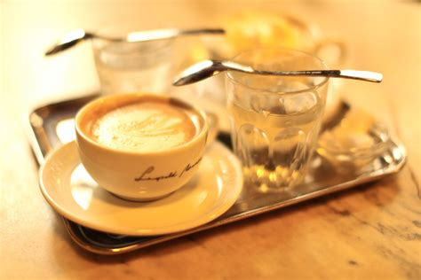 Coffee Lo Ver M coffee lovers guide to vienna international traveller