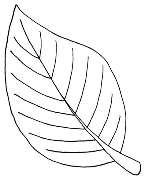 Coloring Page Of A Leaf | leaf coloring pages coloring ville
