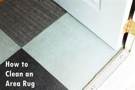 how do you clean a wool rug how to clean area rug home design ideas and pictures