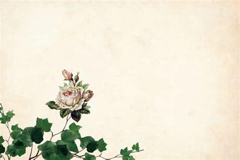 bunga frame undangan