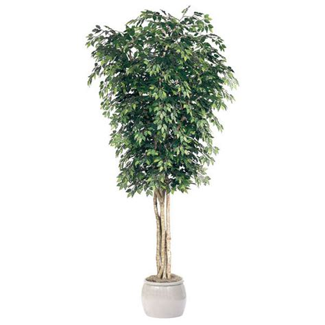 12 Foot Artificial Tree - 12 foot artificial ficus tree potted gp 12