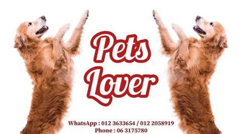 pet shops  melaka  pet lovers melaka travel guide