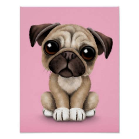 puppy posters pug posters zazzle