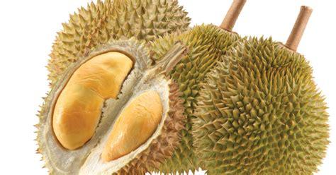 alasan   perlu makan durian persagi bandung