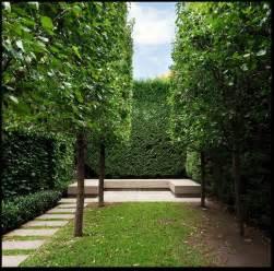 minimalist garden landscaping minimalist