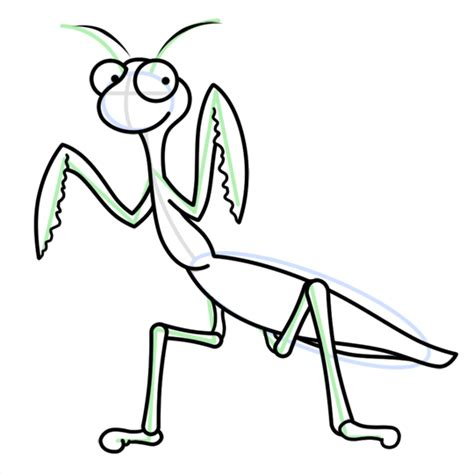 praying mantis insect cartoon drawing lesson