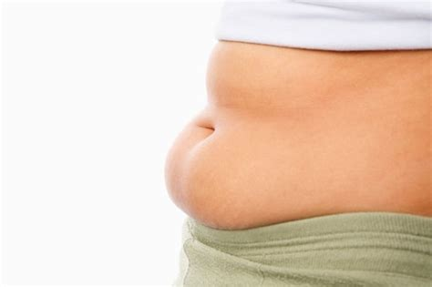 Shed Belly by Belly Fix Your Fatty Liver Indian Weight Loss