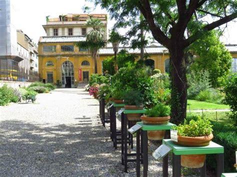 giardino dei semplici firenze nel giardino sempreverde corrierefiorentino it