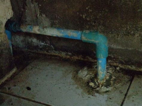 water leak sink water not drain leak kitchen sink diy housing