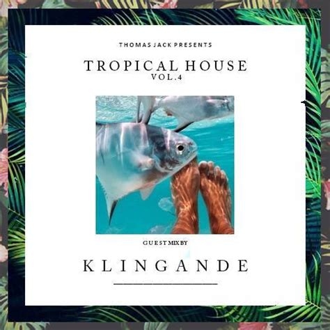 thomas jack tropical house thomas jack vol 4 hits tropical toy store with a mix from klingande
