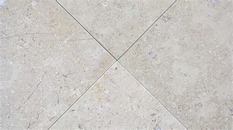 Fossil F 3426 the 14 best images about limestone floor tiles on most popular warm and popular