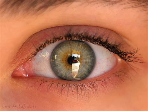 imagenes de ojos verdes claros la ni 241 a de los ojos verdes salto al reverso