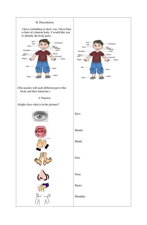grade 5 human worksheets parts of the worksheet grade 1 science worksheets pdf printable 1st to 6th gradesbody