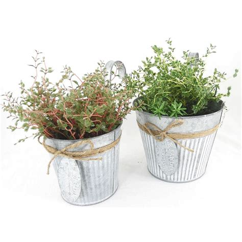 fence hanging planters hanging fence gate galvanised pot planter