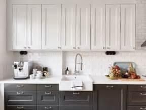 Kitchen Cabinet Colours The Zhush Details Dual Kitchen Cabinet Colors
