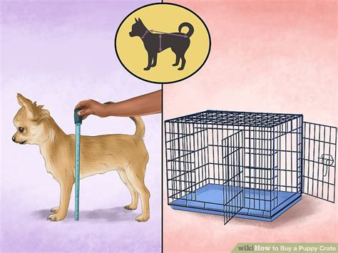puppy in crate puppy crates puppy screams in crate small crates puppy and small crate