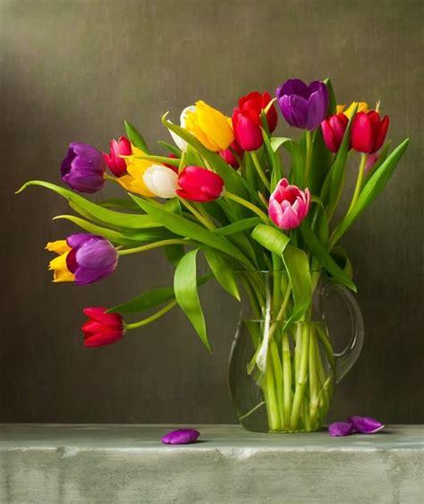 la guadalupana desmotivaciones banco de im 193 genes arreglo floral con hermosos tulipanes