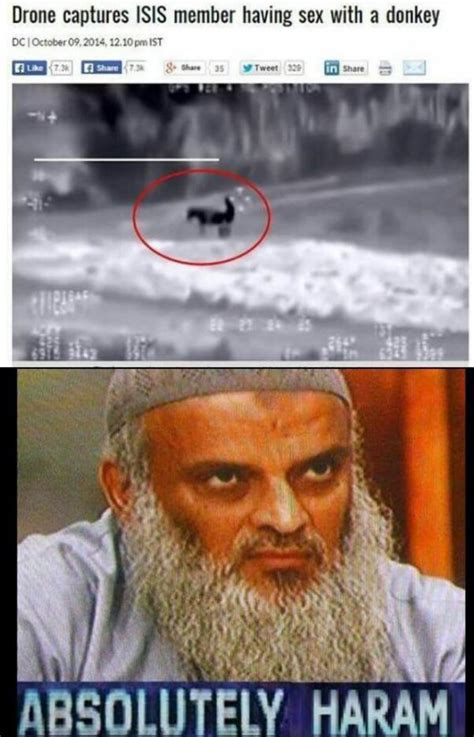 Halal Memes - drone captures isis member having sex with a donkey