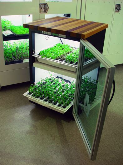 kitchen cultivatoropen door home hydroponics