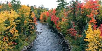 best fall colors top fall color drives in michigan and dates to go