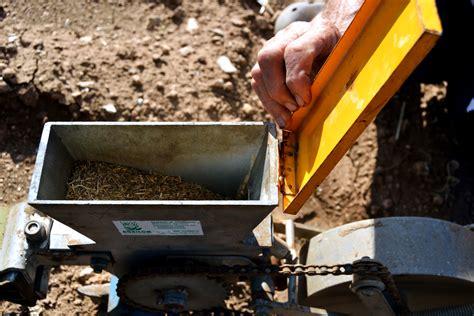 seme bari oronzo giuliacci coltiva la carota di polignano da
