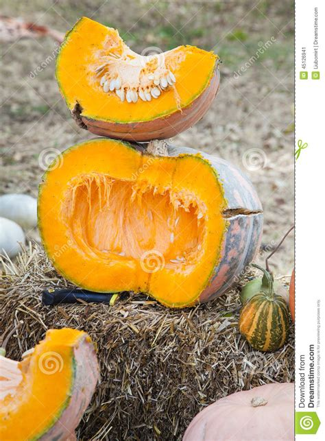 how to cut a pumpkin for half cut pumpkin stock photo image 45126941