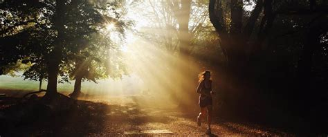 In The Morning Light by Morning Light Could Be Key To Leaner Physique Study Finds