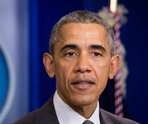 federal presidential constitutional republic president barack obama cns jeffrey obama breaking constitutional laws with dapa
