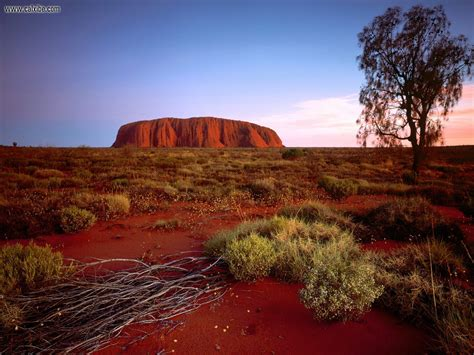 green wallpaper australia nature ayers rock northern territory australia picture