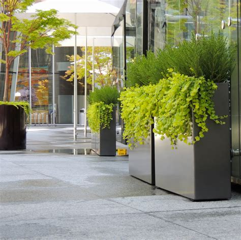 Patio Tree Planters by Modern Tree Planters Modern Patio Vancouver By