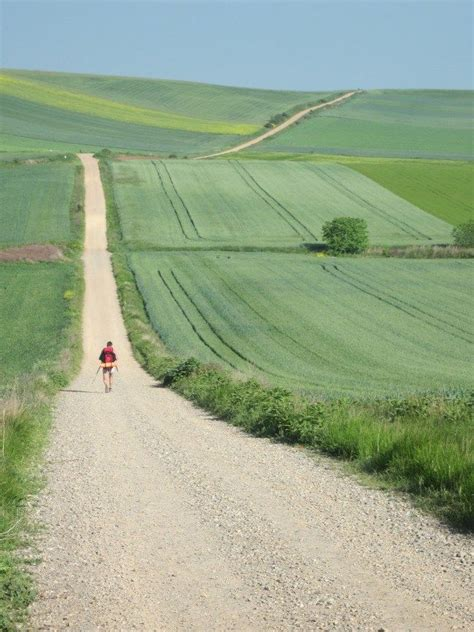 17 best ideas about camino de santiago on
