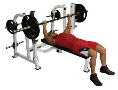 what does a bench press workout what are top reasons behind the popularity of bench press