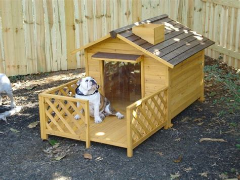 cute dog house cute dog house pallets pinterest