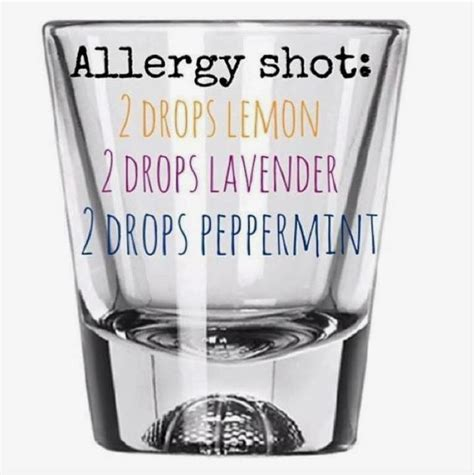 essential oils for allergies 1000 images about essential oils on