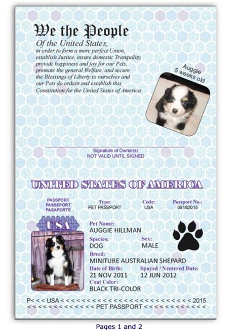 puppy passport pet passport custom passport invitations