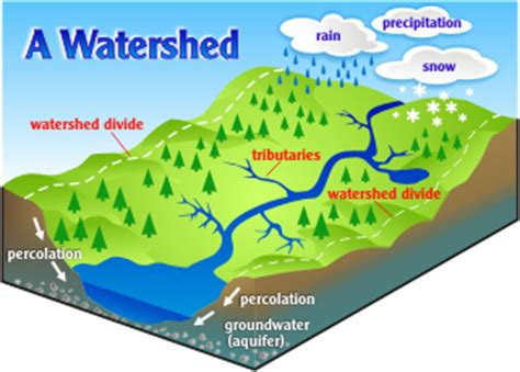 Define Water Shed surfacewater watershed