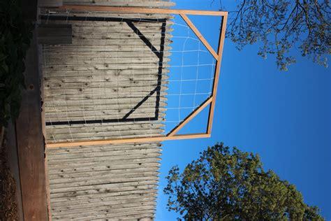 build  trellis  vertical gardening