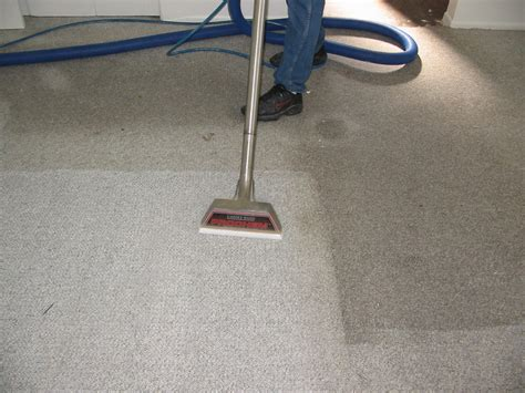 Pro Clean Carpet Cleaning Floor Services by Why You Need Professional Carpet Cleaning Services