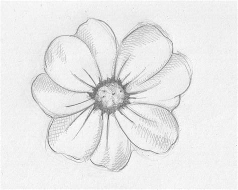 Simple Search Simple Pencil Drawings Drawings Search Easy Drawings