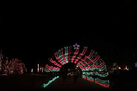 christmas light tunnel picture of living desert zoo