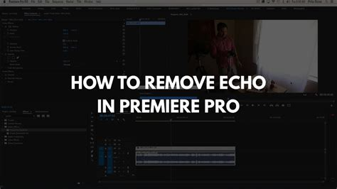 adobe premiere cs6 remove echo reduce echo in premiere pro with parametric equalizer