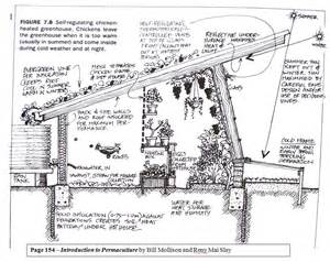 Garden Shed Greenhouse Plans free range ideas in action chickens in the greenhouse
